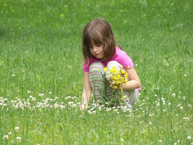 פרחי באך בטיפול בהפרעות קשב וריכוז